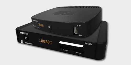 GS E501/GS C591